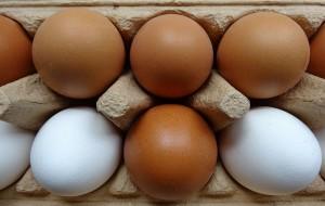 Gesunde-Eier-300x190 in Warum Eier so gesund sind